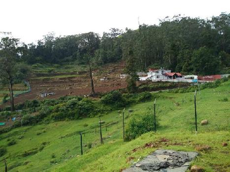 50 cents land for sale in nilgiris kallatti
