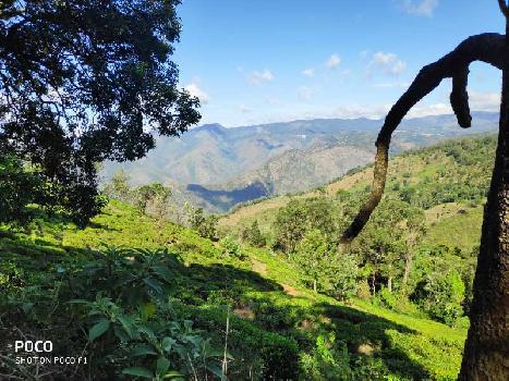 2.5 acres for sale in coonoor manjakombai