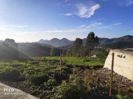 45 cents land for sale in coonoor