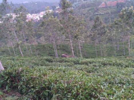 500 acre land for sale in kodaikanal low budjet