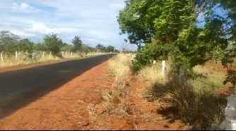 Farm land for sale in thirunelveli
