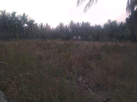 Agricultural/Farm Land for Sale in Kelamangalam Road, Hosur