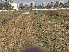 Residential Plot For Sale In Shivalik Nagar , Haridwar.