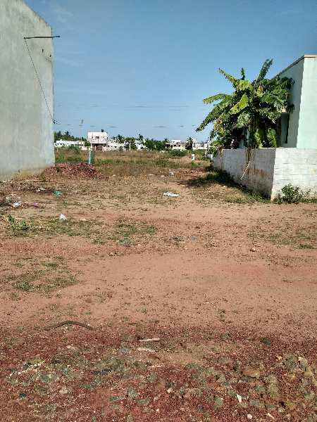Residential DTP Approved Plot For Sale in LIC Colony, M.C. Road, Thanjavur