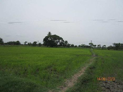 4 Acre Agriculture Land for Sale in Kovathakudi, Melattur, Papanasan, Thanjavur
