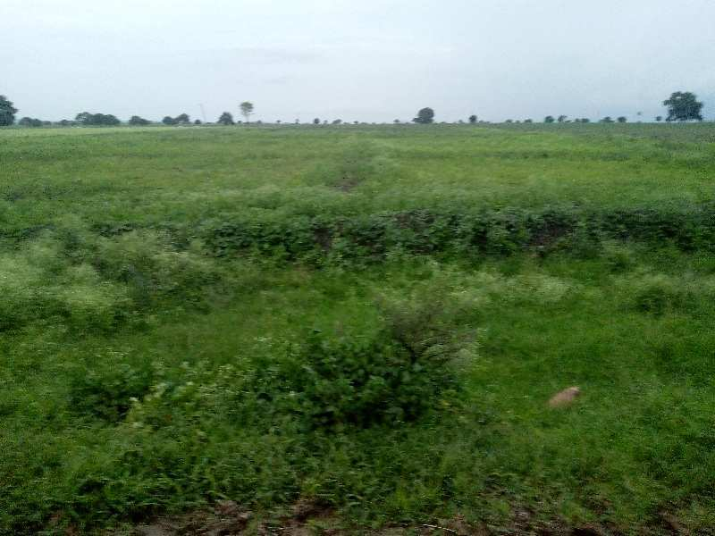 Agriculture Land for Sale in Chinnachintakunta