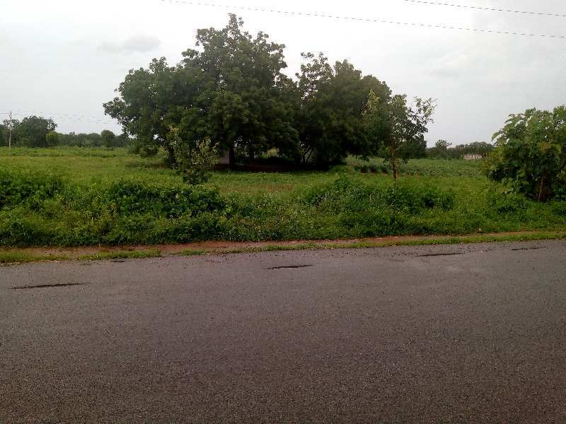 Agricultural/Farm Land for Sale in Mahbubnagar