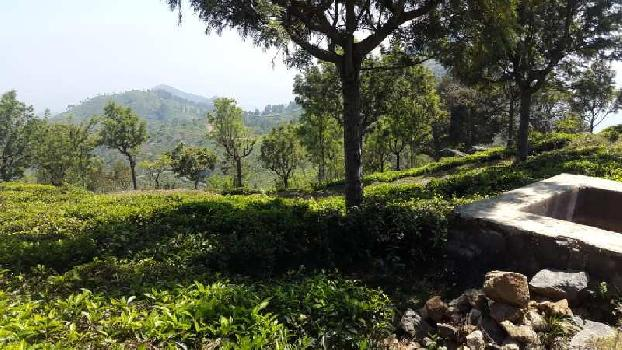 Factory Space Available For Sale In Ooty Hill, Nilgiris