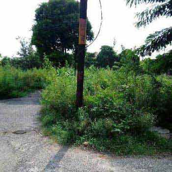 Residential Plot For Sale In Yamunapuram Colony, Bulandshahr