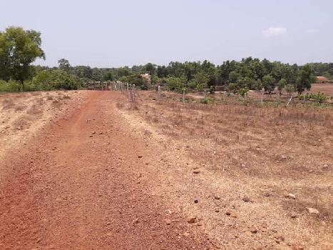 37 Guntha Residential Plot for Sale in Kudal, Sindhudurg