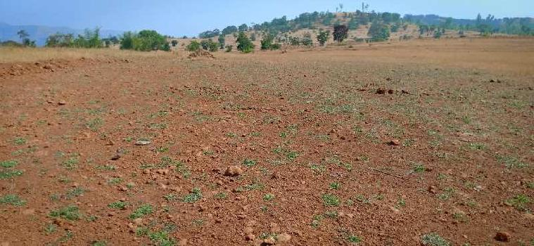 Commercial Plot For Sale In Amba Kolhapur