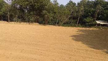 Plot in AIIMS munshiganj