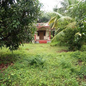 1 BHK Individual Houses / Villas for Sale in Alibag, Raigad