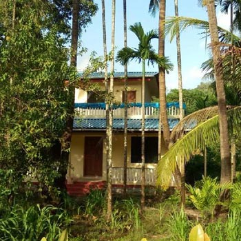 7.60 Guntha Agricultural/Farm Land for Sale in Alibag, Raigad