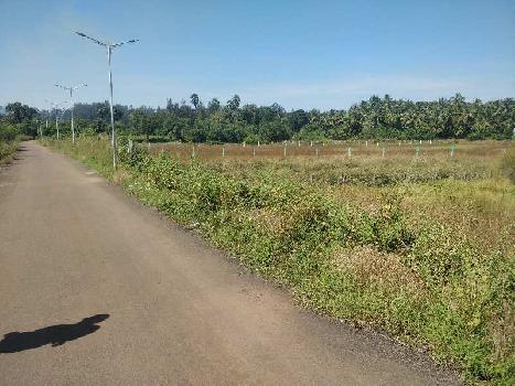 NAGAON FARM LAND
