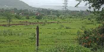 Agricultural/Farm Land for Sale in Chandkhed, Pune
