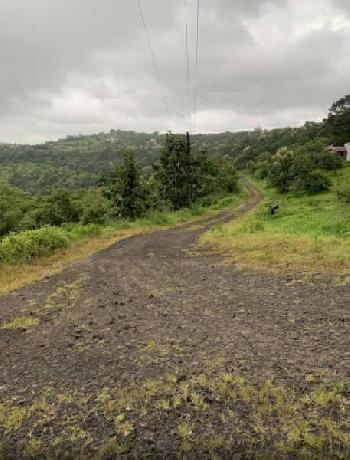 6000 Sq.ft. Agricultural/Farm Land for Sale in Bhukum, Pune