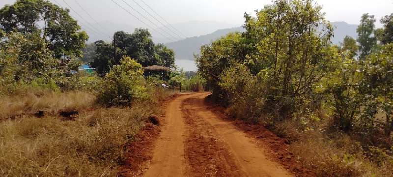 34000 Sq.ft. Agricultural/Farm Land for Sale in Bhor, Pune