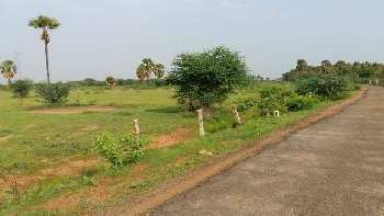 2.4 Acre Farm Land For Sale