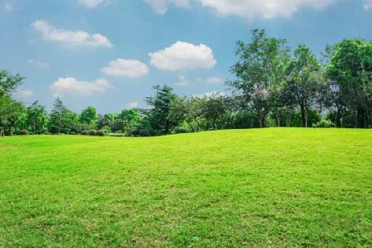 2kattha land near Kanchrapara kapa more at 8 lakhs