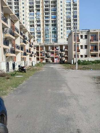 1 bhk flat in sector 84,faridabad