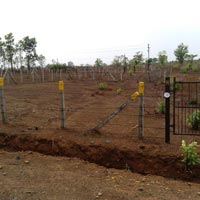 Residential Land For Sale in Murbad