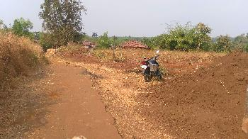 Agricultural/Farm Land for Sale in Murbad, Thane