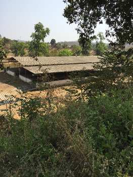 Farm House Tabela 1 Acre sale in Badlapur near Saagav 12 kms from Badlapur on Baravi Dam Road