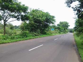 6 Goonthas NH 222  Highway Touch Agriculture  Land  sale  on Murbad