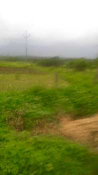 62  Goonthas Agriculture Land in Tokavade  ,Murbad