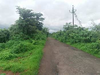 6 Acre Agriculture land available for sale near vangni,Karjat