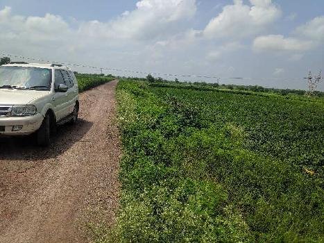 70 Acre Agriculture Plot For Sales At Simga, Berla, Bemetara, Raipur Capital OF Chhattisgarh India.