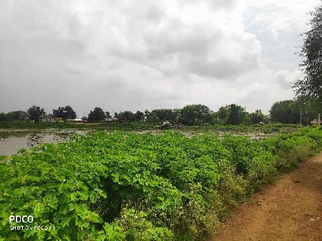 25 Acre Agriculture Plot For Sales At Chatuwa, Near Simga, NH30 To Berla, Bemetara, Raipur Capital OF Chhattisgarh India.