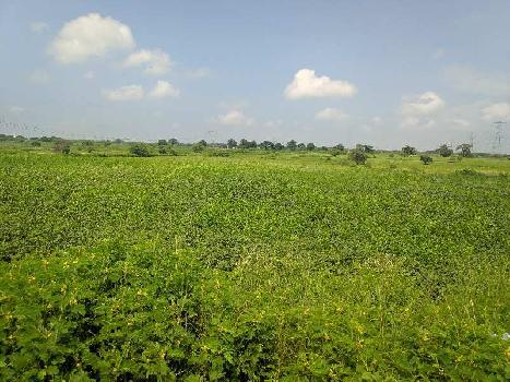 Agricultural/Farm Land for Sale in Civil Lines, Raipur