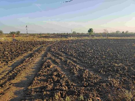 60 Acre Agriculture Black Soil Farming Land Fir Sale At  Jhiriya USHLAPUR Nandghat Mungeli Bemetara Roads Chhattisgarh India