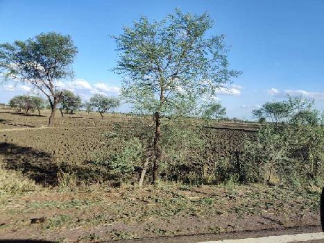 60 Acre Agriculture Black Soil Farming Land Fir Sale At  Jhiriya USHLAPUR Nandghat Mungeli Bemetara Roads Chhattisgarh India