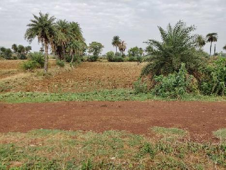 2Acre Agriculture Farming Farm House Use Land ,Tenduva, Banjari, POUTA , Naya Raipur, Raipur Capital Of Chhattisgarh.