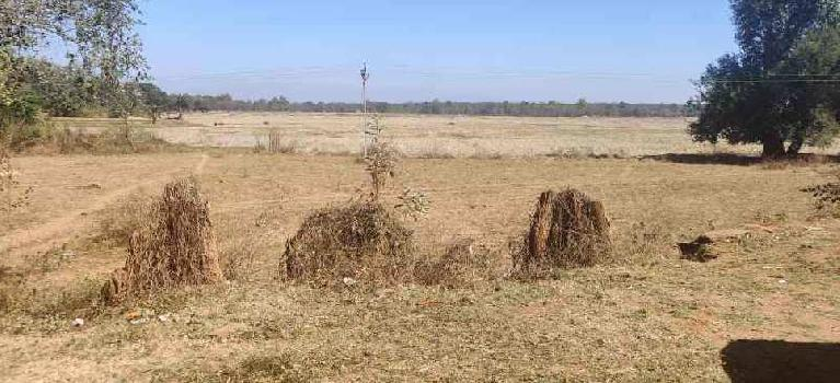 50Acre PLot For Sale At Industrial Area Jagdalpur, Bastar, Chhattisgarh.