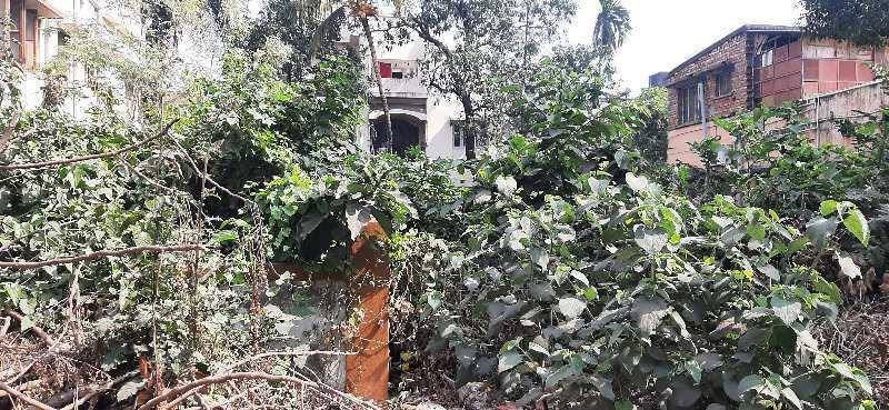 2700 Sq.ft. Residential Plot for Sale in Salt Lake, Kolkata