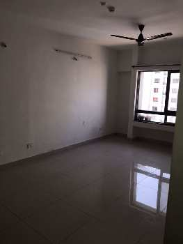 1 BHK flat for rent in Blue Ridge Hinjewadi Phase - 1