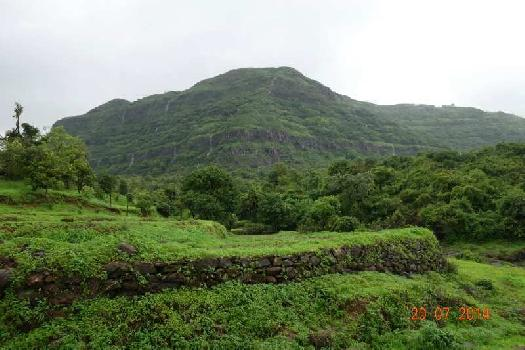 63 Acers Residential Land for Sale Next to Katraj