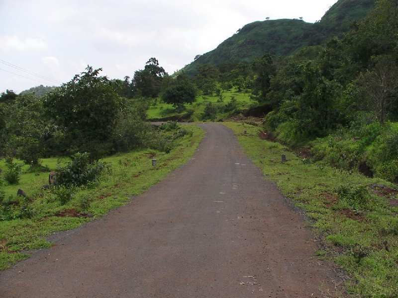 22000 Sqft. residential road touch plot for sale in Hinjewadi Phase -3