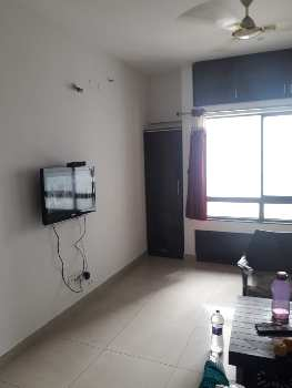 1 BHK fully Furnished flat for rent in Blue Ridge