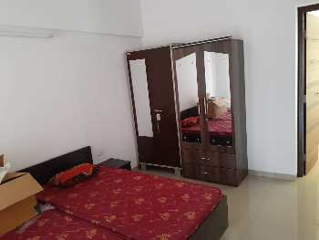 2 BHK furnished falt for rent in Ashok Meadows, Hinjewadi