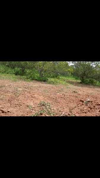 Farm land with yearly income
