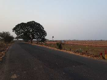 Low budget plots Gannavaram
