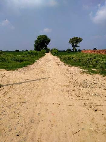 Agriculture Land Near golden gate bridge Amritsar