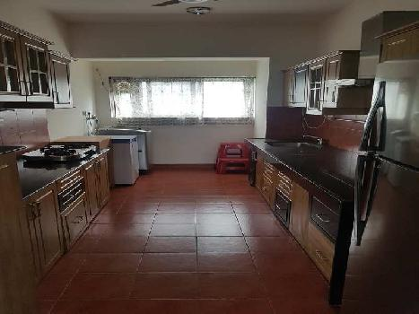 The Woods 3BHK Lavish Fully Furnished Flat on Rent for Family