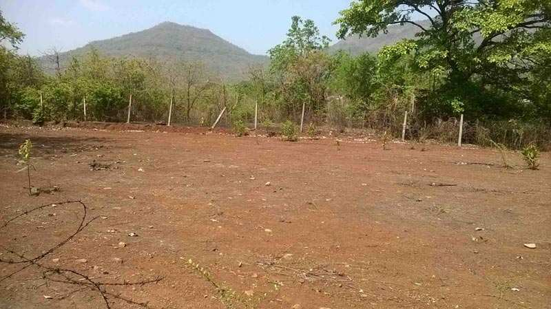 Commercial Plot For Sale In Auto Market, Rewari