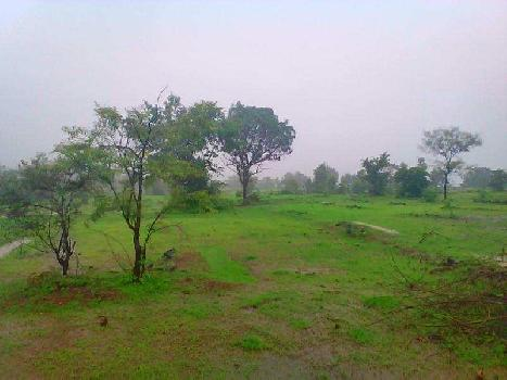 Farm Land in Farm house sale in Fulwadi,Bharuch